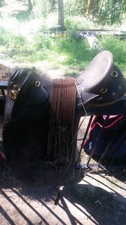 STOCK saddle and 2 bitless bridles $100 Diddillibah Maroochydore Area Preview