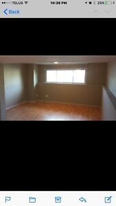 Basement suite for rent all included