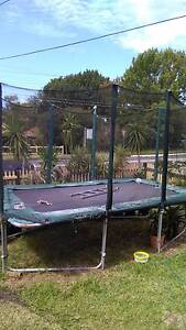 Trampoline for free Concord West Canada Bay Area Preview