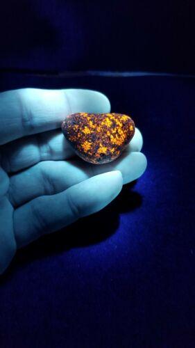 FULL BRIGHT !! BEAUTIFUL Lake Superior Yooperlite Glowing Stone 1.0oz.
