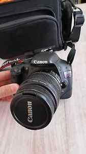 Canon Kiss X4 (550D) Thornton Maitland Area Preview