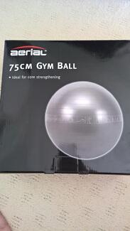 Big 75cm Gym Ball Arundel Gold Coast City Preview
