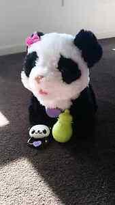 Fur real panda Jerrabomberra Queanbeyan Area Preview
