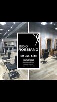 Looking for hairdresser with clientel in Montreal - Nord