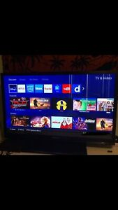 "54"" Palsonic TV"