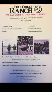 Still spaces left in our PA HORSE camp this Friday London Ontario image 1