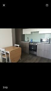 Roommates wanted in pace condo 159 dundas east
