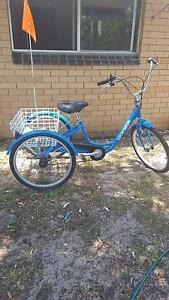 adult tricycle Lennox Head Ballina Area Preview