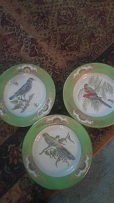 Vista Alegre CHELSEA BIRDS  DINNER PLATES 10""