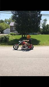 Pocket bike chopper
