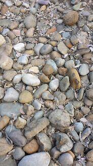 Garden rocks - FREE!!! Oakhurst Blacktown Area Preview