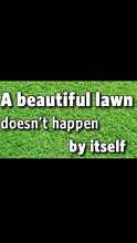 AFFORDABLE AND CHEAP LAWN MOWING SERVICE Liverpool Liverpool Area Preview