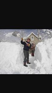 RELIABLE SNOW REMOVAL ! 125 MONTHLY !  20 A DRIVEWAY !  Regina Regina Area image 3