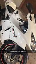 1992 Cbr250rr TYGA FAIRING KIT LOW KMS Payneham Norwood Area Preview