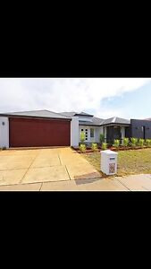 4x2 Family Home with Swimming Pool Ellenbrook Swan Area Preview