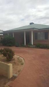 Lovely Rental Home in Merredin Available $350 PW Merredin Merredin Area Preview