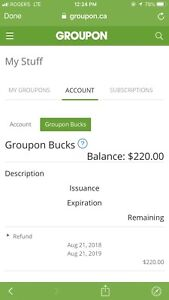 Groupon credit $195 selling for &175