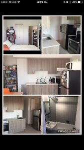GORGEOUS - NEWLY RENOVATED 4 1/2 - ROSEMONT - April/may