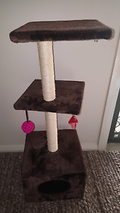 Cat scratcher play tower sold pending picckup Gillieston Heights Maitland Area Preview