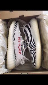 Yeezy zebra DS size 10.5