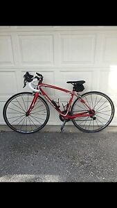 2011 Specialized Ruby Expert