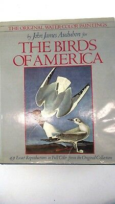 Original Water-Color Paintings Birds of America John James 431 Images 1985 Vol 1