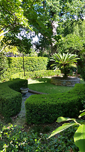 Lovely Gardens R Us Gladesville Ryde Area Preview
