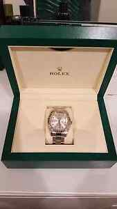 Rolex Oyster Perpetual Datejust Little Bay Eastern Suburbs Preview