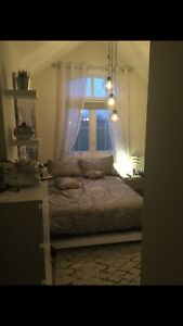 LF Roommate in GORGEOUS, clean, chill home!