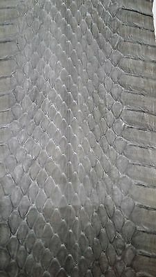 Gray Snake Python Skin Hide Costume Leather Crafts Boy Scouts  BUY 1 GET 1 - Boy Scout Costume