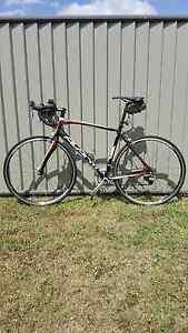 Avanti Giro 3 road bike Meadowbrook Logan Area Preview