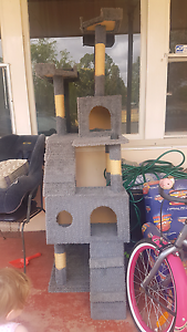 6 level cat house good condition Evanston Gawler Area Preview
