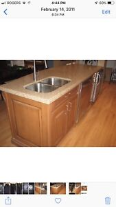 Quartz kitchen countertops and Blanco double stainless sinks