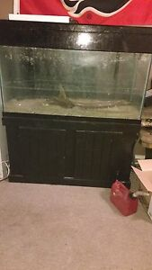 90 & 300 gallon tank with stands….MOVING MUST SELL