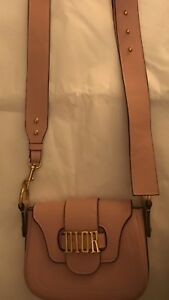 Christian Dior D Fence Saddle Crossbody Bag in Pink