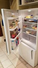 Fisher and Paykal Fridge Freezer Massive 519L Matraville Eastern Suburbs Preview