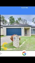 House for rent Durack Brisbane South West Preview