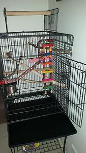 Large bird cage aviary with heaps of accessories for sale Underwood Logan Area Preview
