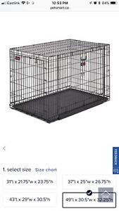 Large XL Big dog crate kennel Kong
