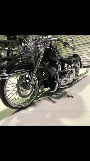 Harley Davidson softtail deluxe Ormiston Redland Area Preview