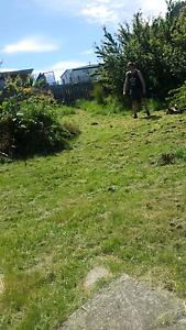 Grass needs mowing!! Launceston Launceston Area Preview