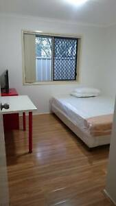 Comfortable room for rent in Sunnybank
