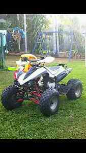 Tmx 125 quad Moulden Palmerston Area Preview