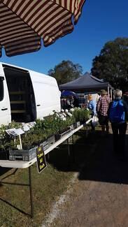 Plant Markets Business