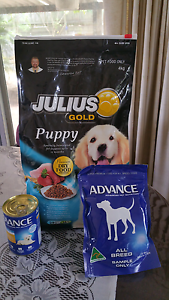 Puppy Food Moorooka Brisbane South West Preview