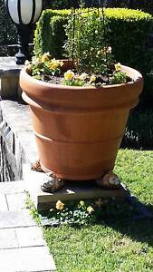 Large Terracotta Garden Pots. Northbridge Willoughby Area Preview