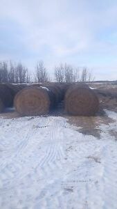 Hay bales for sale.