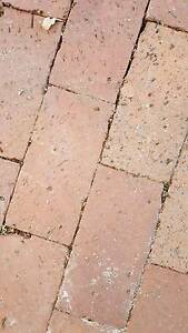 """1980's era """"red brick"""" pavers South Perth South Perth Area Preview"""