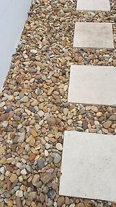Free river/pathway stones and pebbles - fantastic for garden path Beverley Park Kogarah Area Preview