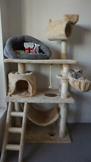 Cat Tree with FREEBIES